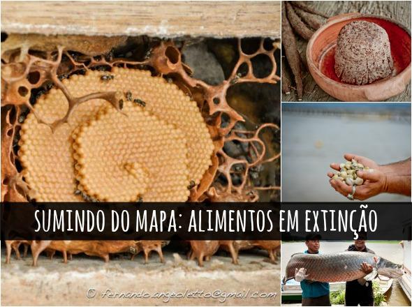 comida blogue