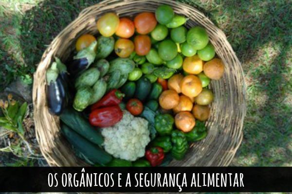 organic4 blog