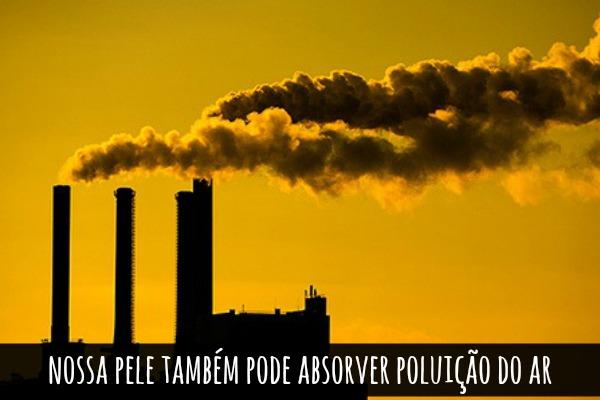 poluiçao blog