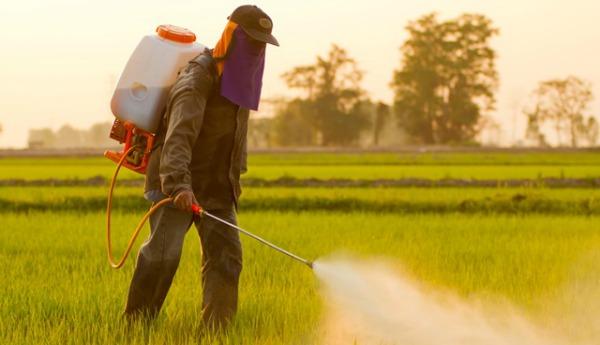 Poluição por agrotóxicos: as consequências invisíveis