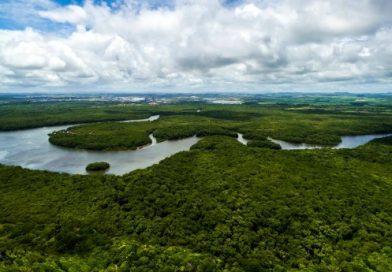 Comunidades locais são cruciais para a Amazônia