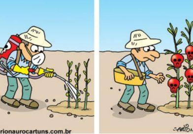 Brasil libera até 5.000 vezes mais agrotóxicos que a Europa