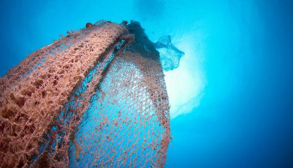 Por ano, 640 mil toneladas de redes de pesca acabam nos mares