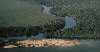 Desmatamento na Amazônia cresceu 13,7% entre 2017 e 2018