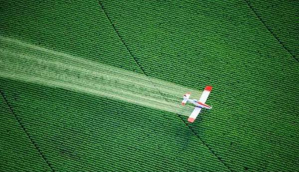 Futura ministra é defensora do projeto que moderniza lei de pesticidas